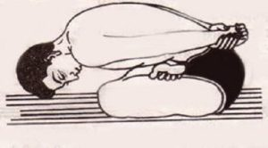 Yogamudrasana makes one's body flexible besides fighting with the ailments.