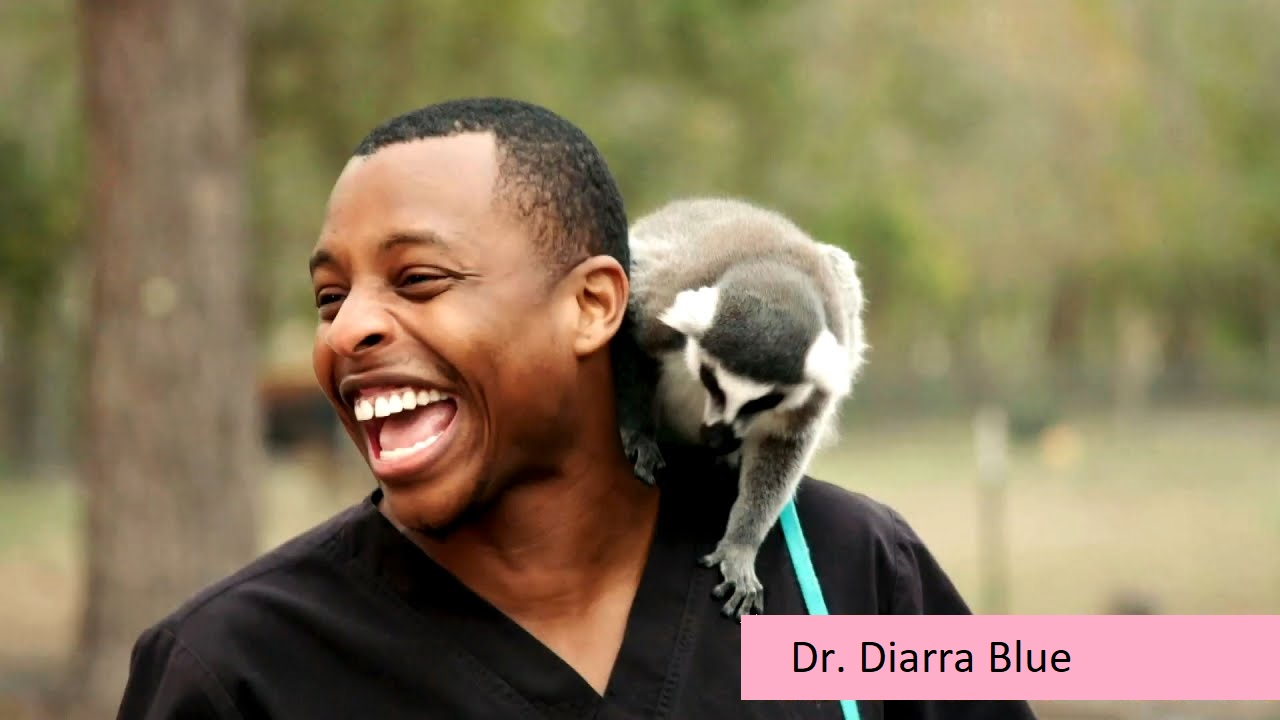 Dr. Diarra Blue's married life
