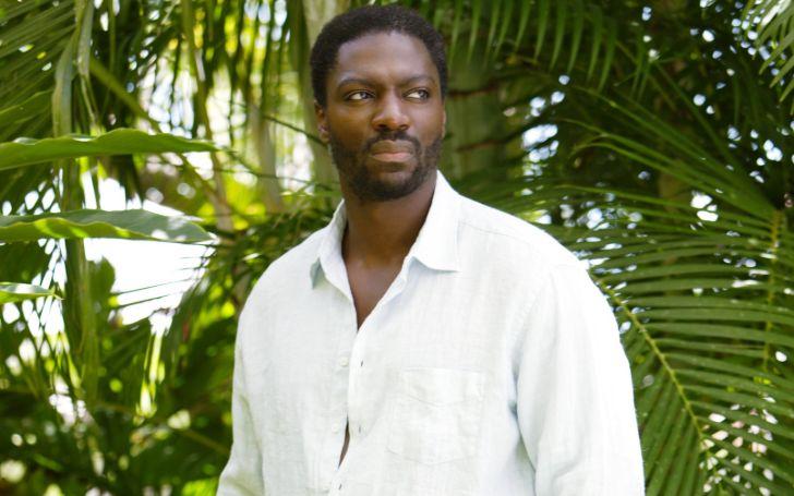 Adewale Akinnuoye- Agbaje Net Worth, Earnings, Movies, Dating, Married, Age, Height, Wiki-Bio