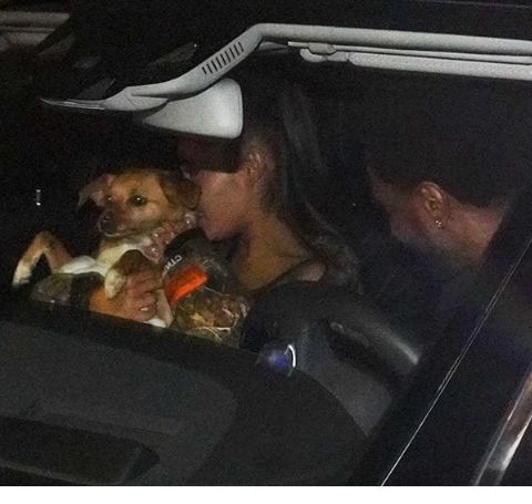 Ariana Grande with her former partner Big Sean and Pet Dog