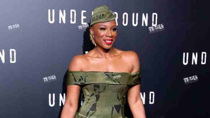 Aisha Hinds Wiki, Age, Height, Movies, TV Shows, Net Worth, Boyfriend!