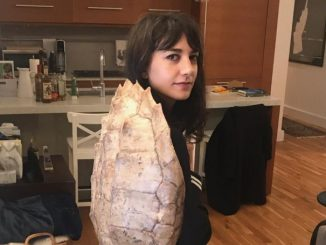 Sheila Vand looks at the camera in a turtle shell on her back.