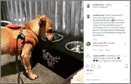 Maddy Curley makes about $200 - $1000 per post from her Instagram.